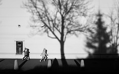 Shadow Play Under Surveillance | Day 180 / 365 (marcin baran) Tags: street city light shadow two people urban blackandwhite sun white black building tree monochrome sunshine silhouette shop kids fun blackwhite kid afternoon fuji shadows candid surveillance awesome streetphotography poland polska sunny running cctv run human fujifilm poles 365 shadowplay element pave marcin gliwice x100 x100t