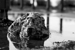 Rock (valeriotrafeli) Tags: white black fav50 fav20 fav30 fav10 fav40 fav60