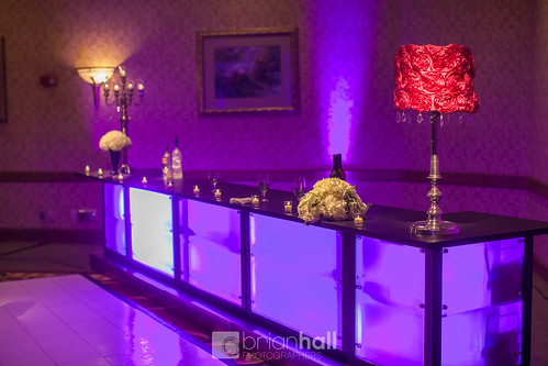 "Custom Bar Cedar Rapids Marriott Wedding Rental • <a style=""font-size:0.8em;"" href=""http://www.flickr.com/photos/81396050@N06/24613967569/"" target=""_blank"">View on Flickr</a>"