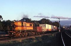 On loan (Bingley Hall) Tags: railroad train diesel transport engine rail railway australia anr an transportation adelaide locomotive southaustralia freight sar sta parklands 830 alco broadgauge australiannational mustardpot dl531 southaustralianrailways 251b aegoodwin statetransportauthority rpausa830 railpage:class=33 railpage:livery=56 railpage:loco=830 rpausa830830