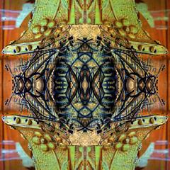 20160120_131803 K3 (C&C52) Tags: closeup mtal cuivre matire kaledoscope artnumrique surimpressions