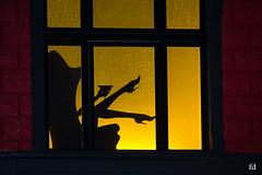noct'en bulles (flo73400) Tags: ombre