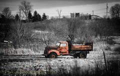 Colour Me Lonely (HTT) (13skies) Tags: old truck vintage rust alone sitting decay tires rusted aged left highway5 htt worktruck happytruckthursday osbornecorners