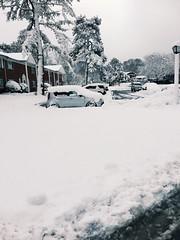 Snowfall (adnanafroze) Tags: winter blizzard snowfallsusa