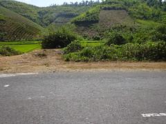 Easy rider to Dalat406