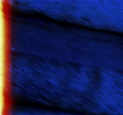 31-192 (ndpa / s. lundeen, archivist) Tags: nick dewolf nickdewolf 31 reel31 color photographbynickdewolf 1970s 1972 fall film 35mm winter japan japanese tokyo honshu city citylife meijishrine shibuya people partial lightleak burnshot burnedshot burnframe burnedframe beginningofroll beginningoftheroll blue blurry outoffocus blur