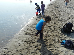 Going swimming at Long Point August 2015 39 (cambridgebayweather) Tags: swimming nunavut cambridgebay arcticocean