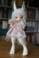 (NewPotatoMash) Tags: cute may bjd fl fairyland abjd yosd realfee