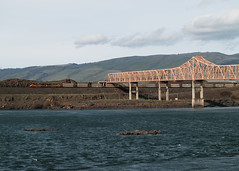 BNSF Garbage Train In Dallesport (PNW Rails Photography) Tags: oregon unitedstates thedalles