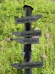 P1020039 (Marc Lamberg) Tags: de marc todtnauberg rgion halde lamberg muggenbrunn gieshbel stohren trubelsmattkopf