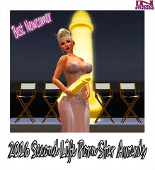 Best Newcomer - Adele Simondsen (Tammy-Jones (accepting clients and critique)) Tags: sexy ceremony best secondlife awards pornstars classy