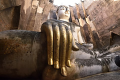 _GRL7747 (TC Yuen) Tags: architecture thailand ruins asia southeastasia buddha unesco worldheritage norththailand ancientcapital