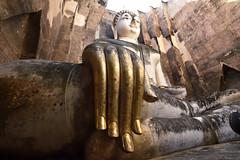 _GRL7747 (TC Yuen) Tags: architecture thailand ruins asia southeastasia buddha unesco worldheritage norththailand ancientcapital