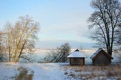 Rocca al Mare (anuwintschalek) Tags: schnee winter sea snow ice see meer tallinn estonia january baltic lumi openairmuseum freilichtmuseum eis ostsee meri itmeri eesti estland talv j 2016 roccaalmare vabahumuuseum lnemeri d7k nikond7000 talvemaastik 18140vr
