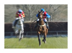 THE LEADER (Lucky Del) Tags: uk scotland jockey horseracing 2016 pointtopoint clydevalley derekmonaghan overtonfarm