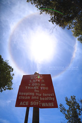 Puncak Bukit Kutu KKB | Sun Halo (AnNamir c[_]) Tags: nature canon halo rare sundog hilltop phenomenon sunhalo kualakubu kkb huluselangor bukitkutu annamir 5dmkiii puncakbukit ncusim puncakbukitkutu