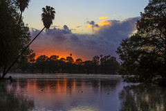 Sunset at Fairmont Park (Dave Toussaint (www.photographersnature.com)) Tags: california ca travel sunset usa sun lake tree nature water night photoshop canon landscape march photo interestingness google interesting photographer riverside cloudy picture palm explore socal adobe getty southerncalifornia inlandempire 2016 riversidecounty fairmontpark denoise topazlabs photographersnaturecom davetoussaint 5dmarkiii cscreativecloud