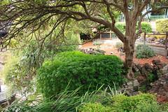 Umpherston Sinkhole garden (Malleeroute) Tags: mount sinkhole mountgambier gambier mtgambier umpherston