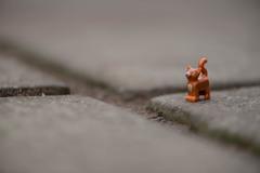 Urban wildlife outtake (@Dave) Tags: urban cat nikon kitten feline lego wildlife theme nikkor dslr pussycat 52 2016 d600