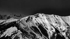 Verena 03 (Conte17) Tags: bw montagne eos neve monte asiago marzo verena 50d rroana