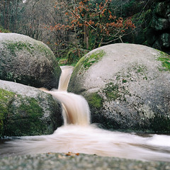 flow (nils_karlson) Tags: colour 6x6 film forest square flow woods stream fuji bretagne boulder ishootfilm pentacon quadrat 80mm pentaconsix c41 400h colourphotography huelgoat fujipro400h pro400h pentacon6 biometar carlzeissbiometar80mm