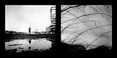 Senza ombrello (Maria Evgenidu) Tags: blackandwhite bw reflection 120 6x6 tlr film rain analog puddle reflecting blackwhite lomo lomography wind bn vintagecamera analogue expired riflessi analogphotography biancoenero oldcamera analogica rami expiredfilm pellicola pozzanghera filmroll analogico yashicamat124 filmisnotdead portoverde classicblackwhite riflettere theanalogproject fotografiaanalogica pellicolascaduta truegrain finchcpellicolacsperanza lomographyearlgrey100 analogpassion iamastoryteller thefilmcommunity thefilmexperience filmisawasteoftime
