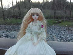 Dark woods (Piccolo Fiore.) Tags: forest noord jdoll loosterweg