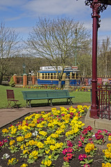 Beamish bandstand view (Nigel Gresley) Tags: flowers yellow gardens beamish bandstand