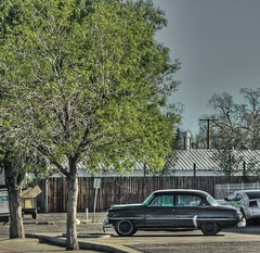 1954 4 door Plymouth Belvedere Sedan-HTMT! (Jo-Warming Up To The 80's :)) Tags: black tree green car sedan vintage plymouth 1954 belvedere hdr 4door