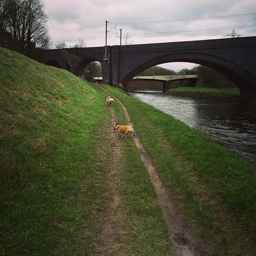 Riverbank walks