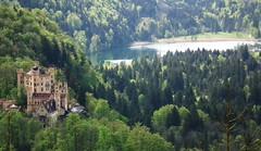 DSCF4226_1 (tsvete alex) Tags: castle germany hohenschwangau