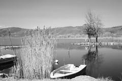 lago infrared (vito.nobile) Tags: bw italy lago italia bn infrared umbria trasimeno infrarosso