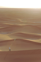 Walking in the dunes (nyoz_fr) Tags: travel mountains cat morroco maroc atlas