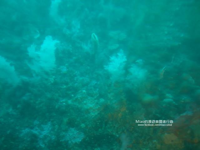 우도잠수함13