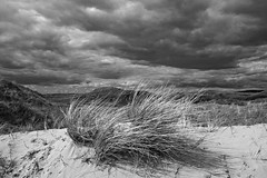 Sand dunes at Kenfig National Nature Reserve, Bridgend County, Wales (Dai Lygad) Tags: life camera light blackandwhite bw white black grass wales clouds contrast canon landscape eos mono moody noiretblanc space air sanddunes kenfig 550d kenfignationalnaturereserve