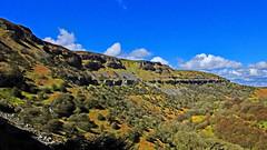 DSCF5317_edited-1 (cmoncymru) Tags: uk wales escarpment llangattwg craigycilau