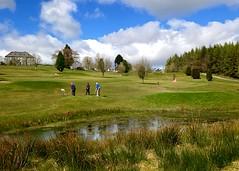 Playing around (Eire's Gorgeous Golden Gorse representative) Tags: ireland irish lake sport golf scenery cork scenic golfcourse waterfeature newmarket pitchandputt iphone5 weeklycolourchallenge 2016onephotoeachday
