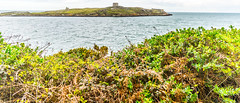 COLIEMORE HARBOUR AREA [DALKEY]-115537 (infomatique) Tags: sea boats harbor harbour streetphotography coastal dalkey williammurphy streetsofdublin infomatique colimoreharbour zozimuz fotonique