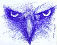 aguila a lapicero (ivanutrera) Tags: animal pen sketch eagle drawing ave draw dibujo ilustracion aguila lapicero guila dibujoalapicero dibujoenboligrafo