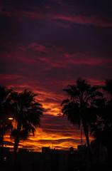 Sunset over the city (Pehun Baravalle) Tags: sunset silhouette buildings coast palm ibiza mansion es cala ciity caleta figueretas calita vedra figueretes comta