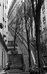 Stairs in Montmartre (Amelien (Fr)) Tags: blackandwhite bw film monochrome analog 50mm nikon noiretblanc nb 150 400 ala epson nikkor 18 rodinal 250 argentique v550 2016 f6 pellicule 50f18 bergger filmisnotdead r09 berggerbw brf400 homescanned believeinfilm capturedonrealfilm