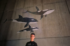 (mirrorballet) Tags: oakland fuji velvia whales yashicat4