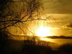 Sonnenuntergang (a.renate) Tags: sunset sonnenuntergang stadtpark nikoncoolpix badliebenstein arenate
