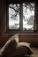 It's cold outside (dianaivanovvaa) Tags: wood winter house snow cold outside cozy warm