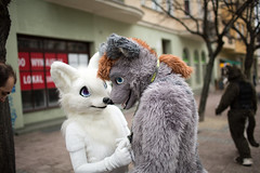 YIFF9223 (Wolfurryon) Tags: furry convention furries gdansk sopot fursuit fursuits furcon wolfurryon gdakon