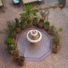 Fountain (yaelgasnier) Tags: travel fountain square colorfull morocco squareformat maroc marrakech marruecos fontaine marokko palmier  wonderfulplaces   zellige shotaward vsco beautifuldestinations iphoneography instagramapp instamorocco igworldclub iphone6plus marocphotonet