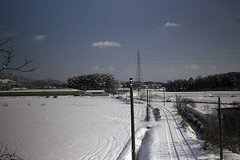 Snowed Rural Path Landscape (Johnnie Shene Photography(Thanks, 1Million+ Views)) Tags: road street winter light sky people snow cold colour macro nature beautiful horizontal skyline rural canon wonderful lens wonder photography eos rebel countryside daylight dc high focus scenery kiss day view angle natural image outdoor snowy path no country wide january scenic sigma tranquility scene korea korean modified roads temperature awe viewpoint effect tranquil adjustment freshness  foreground jeonju t3i snowed x5    fragility  600d 1770mm f284