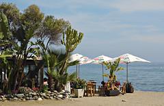 Tropical Beach! ('cosmicgirl1960' NEW CANON CAMERA) Tags: blue spain espana costadelsol andalusia sanpedro yabbadabbadoo