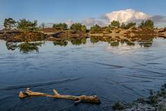 Aekingerzand - nachtvorst (Pieter ( PPoot )) Tags: water bevroren hout heide ijs wolk spiegeling aekingerzand vlies kaleduinen nachtvorst stuifzand
