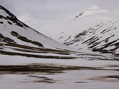 Iceland (boncey) Tags: iceland lenstagged olympus ep3 40150mm olympusep3 olympuspenep3 camera:model=olympuspenep3 lens:make=olympus olympus40150f4056 lens:model=olympus40150f4056 photodb:id=23467